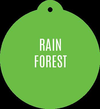 Rain Forest Fragrance